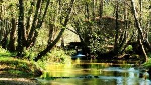 Ecoturismo em Portugal